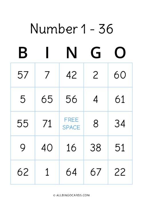 Number 1 - 36 Bingo