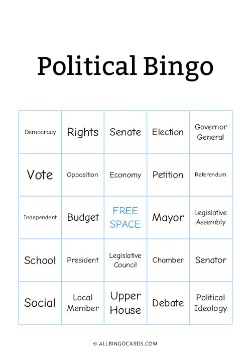 Political Bingo