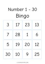 Numbers 1 - 30 Bingo