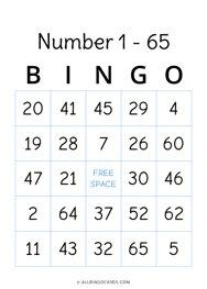 Number 1 - 65 Bingo