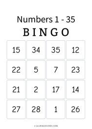 Numbers 1 - 35 Bingo