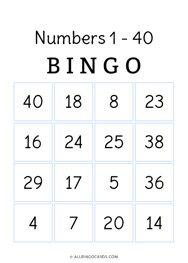 1 - 40 Number Bingo