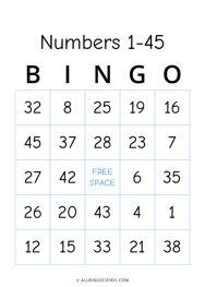 1 - 45 Number Bingo