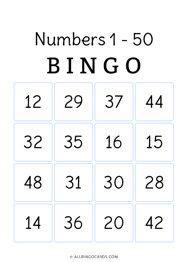 1 - 50 Number Bingo