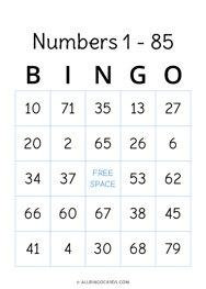 Numbers 1 - 85 Bingo